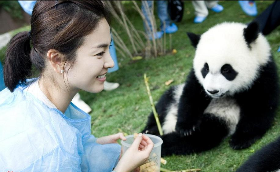 Song Hye Kyo and panda
