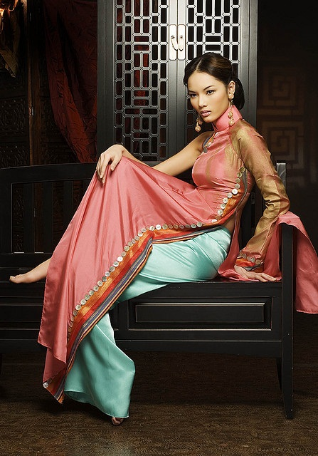 Vietnamese model in áo dài photo